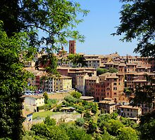 Under The Tuscan Sun by danni-milton