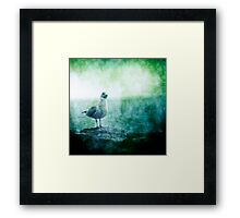 See the Seagull Framed Print