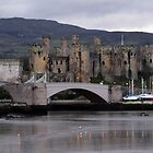 Conwy Castle by Johindes
