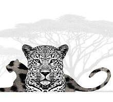 Jungle Cat by UneartheDesigns