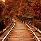 Long Way Home Train Tracks by alyphoto