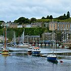 Porthmadog by Lanis Rossi