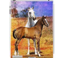Grey Arabian Mare & Colt Foal iPad Case/Skin