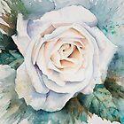 White Rose by Anita Murphy