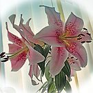 Muscadet Lily by Avril Harris