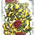 Snake 'n' Roses by drakhenliche