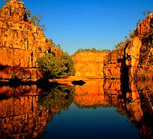 A tree and it's reflection at Katherine Gorge by myraj