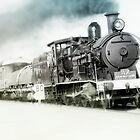 Full steam ahead by kevin chippindall
