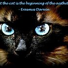 SIAMESE CAT WITH QUOTE by Laurast