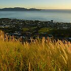 Magnetic Island at sunrise by PhotosByG