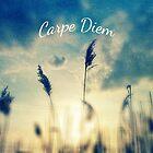 Carpe Diem by sandra arduini
