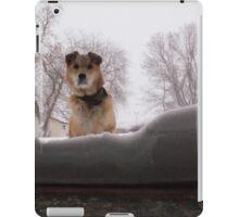 Snow day. iPad Case/Skin