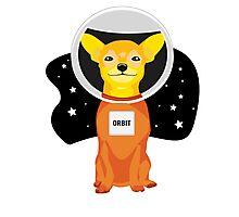 Orbit The Astronaut Photographic Print