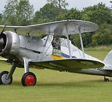 Gloster Gladiator I by mike  jordan.