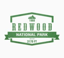 Red Wood National Park, California by CarbonClothing