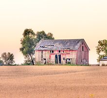 Red Barn at Sunrise by Dawn Crouse