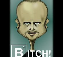 Breaking Bad (Jesse Pinkman Bitch!) by ArtOfAaron