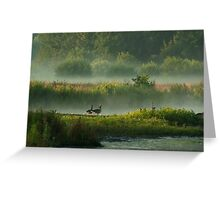 In Misty Morningland Greeting Card