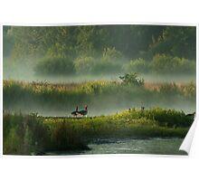 In Misty Morningland Poster