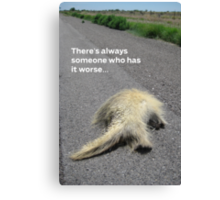 Roadkill Reality Canvas Print