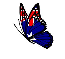 Australian  Flag Butterfly Photographic Print