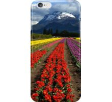 Tulips at the foot of the mountain. iPhone Case/Skin