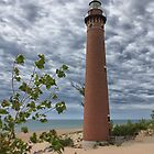Flower girl by Little Sable Point Lighthouse by DArthurBrown
