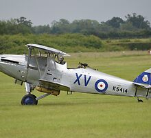 Hawker Hind by mike  jordan.