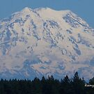 Mt. Rainer in summer by Kathleen Hamilton