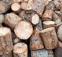 View of firewood logs in a stack by Stanciuc