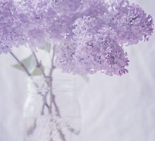 Lilacs III by Suzanne Harford