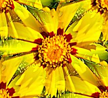 YELLOW DAISY by Artisimo
