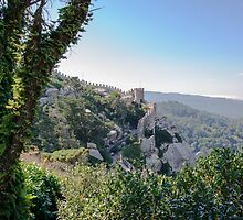 Castle of the Moors in Sintra, Portugal by Stanciuc