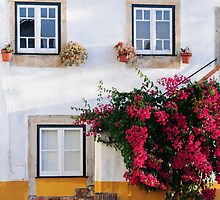 Traditional Portuguese architecture by Stanciuc