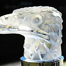 Eagles Head Hood Ornament from a 1934 Packard by Marilyn Harris