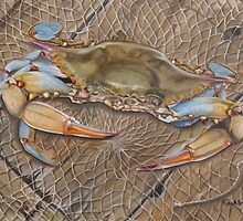 Crab In A Trap by Phyllis Beiser