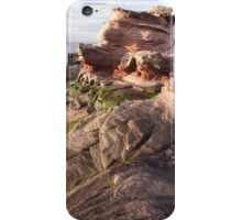 Sandstone Rock formations - Scotland's East Coast iPhone Case/Skin