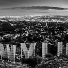 Hollywood by Radek Hofman