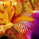 Magic Iris Throw Pillows by Vitta