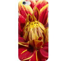 9 - Fiore iPhone Case/Skin