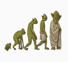 Evolution: Frog to Yoda by Kyle Wadeson
