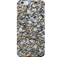 Sea Shell City 2 iPhone Case/Skin