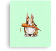 Bunny Eating a Carrot Canvas Print