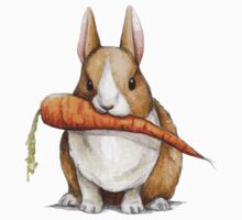 Bunny Eating a Carrot Kids Clothes