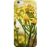 Wild Flowers Watercolor 2014 iPhone Case/Skin