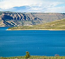 Blue Mesa Reservoir West End 2  by Robert Meyers-Lussier