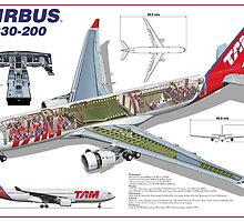 Airlines Collection Airbus A330-200 TAM by wilsoncara