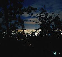 LA at night by Santamariaa