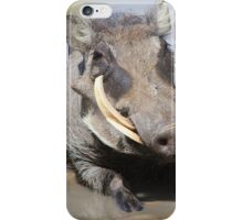 Warthog - African Wildlife Background - Summer Swim iPhone Case/Skin