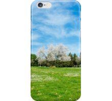 16 - Panorama iPhone Case/Skin